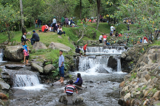 4 Tempat Menarik Kebun Raya Cibodas Wisata Taman Sakura Bunga