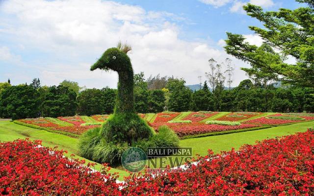 Berkeliling Tempat Wisata Bogor Mampir Taman Sumber Ksmtour Foto Bunga