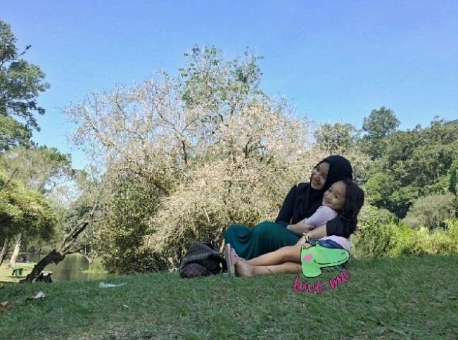 Bunga Sakura Kebun Raya Cibodas Tempat Wisata Bogor Asik Taman