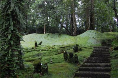 Kebun Raya Cibodas Lipi Cbg Copy Dsc 1671 Jpg Taman