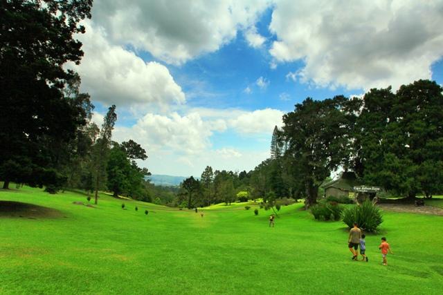 Kebun Raya Cibodas Wisata Menarik Dekat Puncak Taman Sakura Kab