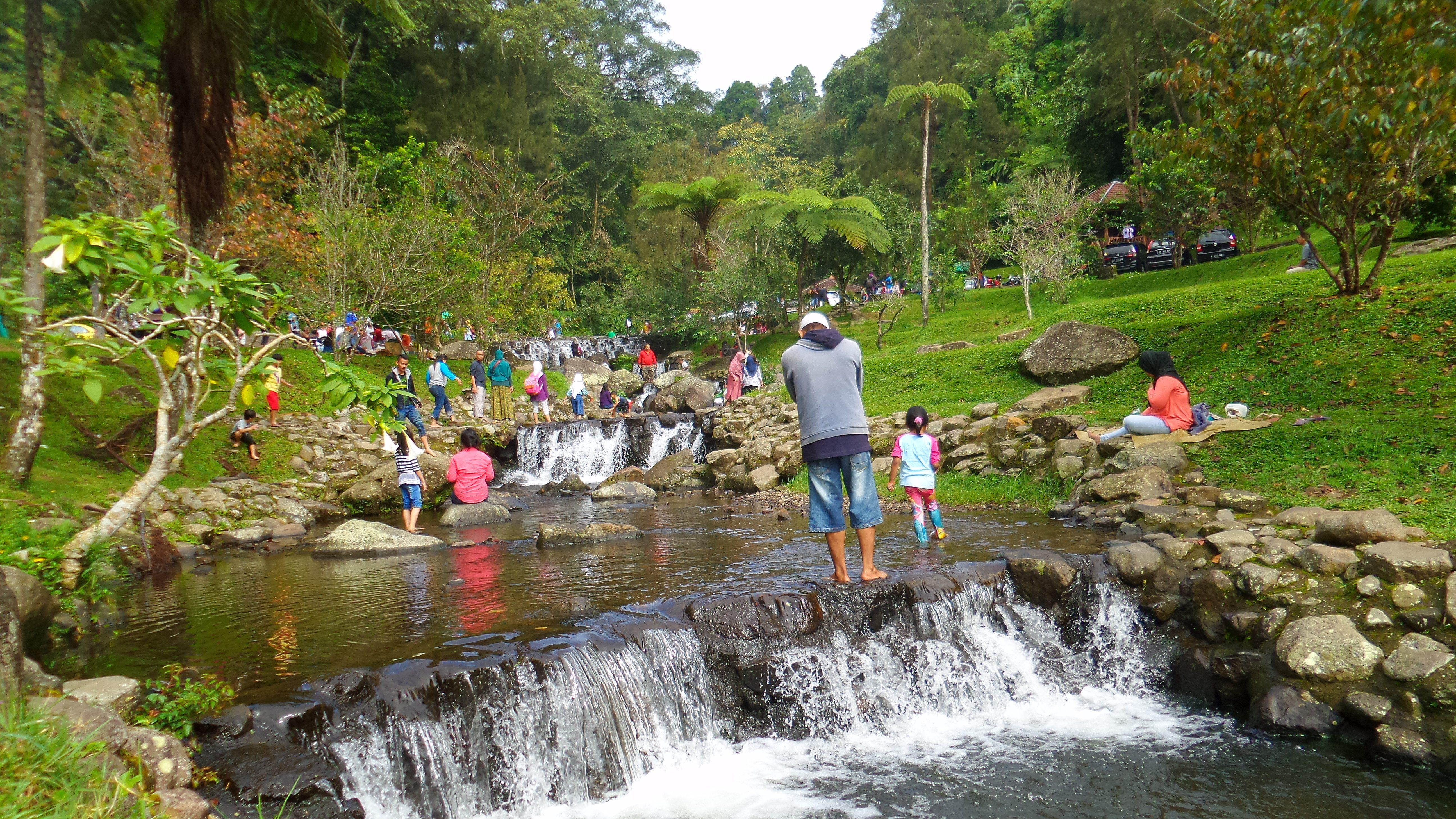 Limakaki Kebun Raya Cibodas Lokasi Wisata Kaki Gunung Gede Berbagai