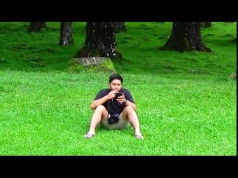 Wisata Alam Kebun Raya Cibodas Puncak Full Hd Youtube Taman