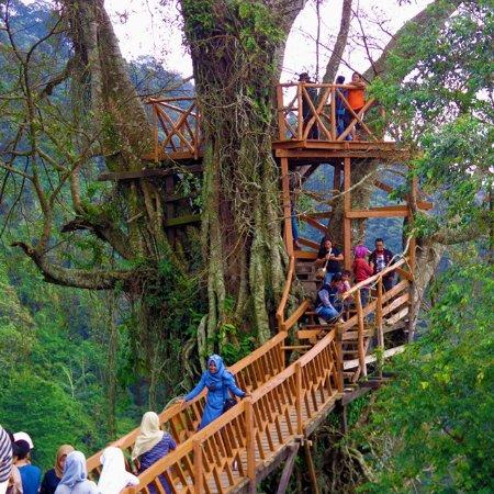 Tiket Masuk Wisata Alam Curug Cipamingkis Kab Bogor 2019 Harga