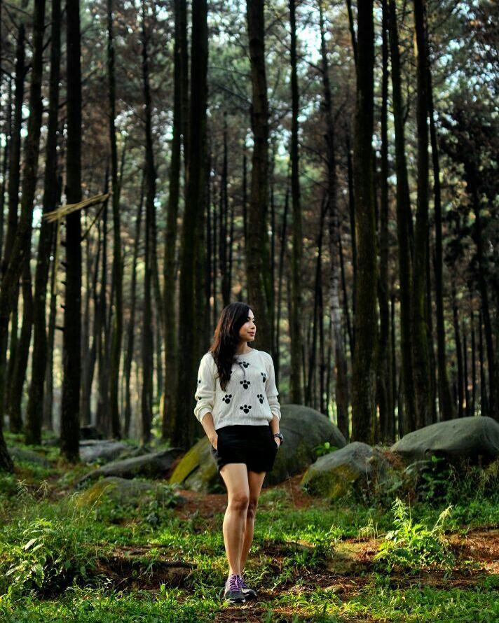 8 Wisata Alam Bogor Wajib Kamu Kunjungi Angkutkoper Gunung Pancar