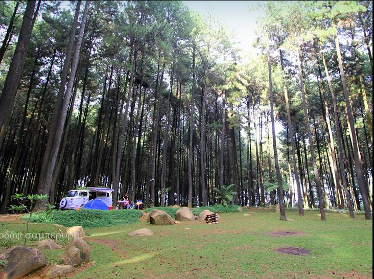 Gunung Pancar Hayukabogor Wisata Kab Bogor