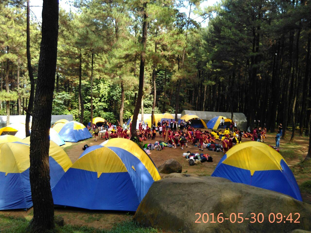 Gunung Pancar Sentul Bogor Wisata Hutan Pinus Air Panas Camping