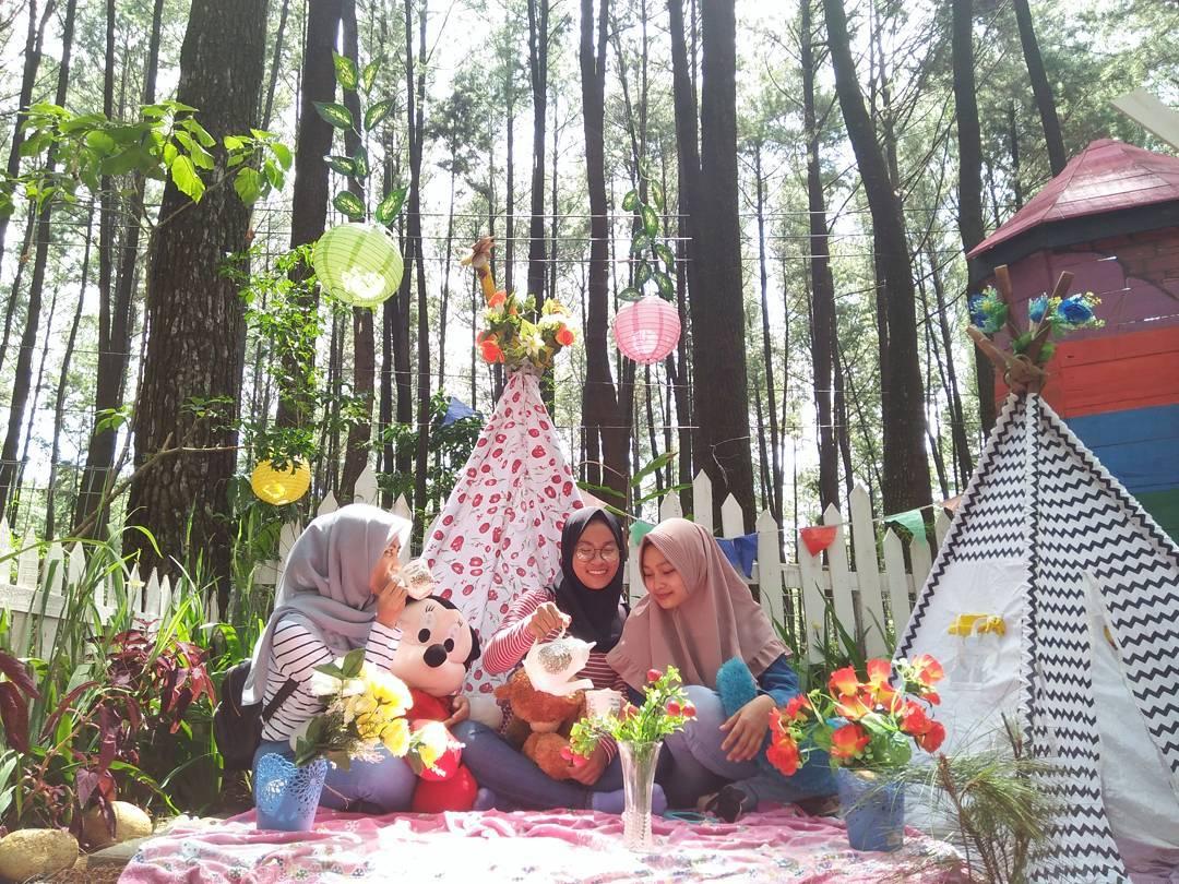 Harga Tiket Rute Lokasi Gunung Pancar Bogor Wisata Kab