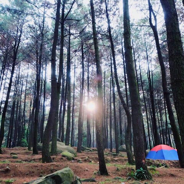 Pancar Wisata Alam Populer Bogor Gunung Kab