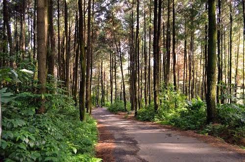Pesona Gunung Pancar Bogor Cibinong Online Menurut Schmidt Ferguson Kawasan
