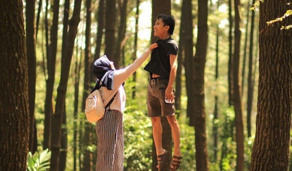 Pinus Gunung Pancar Tempat Wisata Bogor Asik Download Size Handphone
