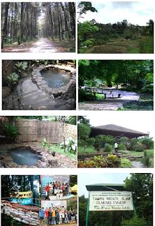 Potensi Wisata Gunung Pancar Kab Bogor