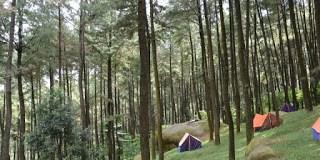 Rute Gunung Pancar Bogor Harga Tiket Masuk Wisata Tanahair Kab