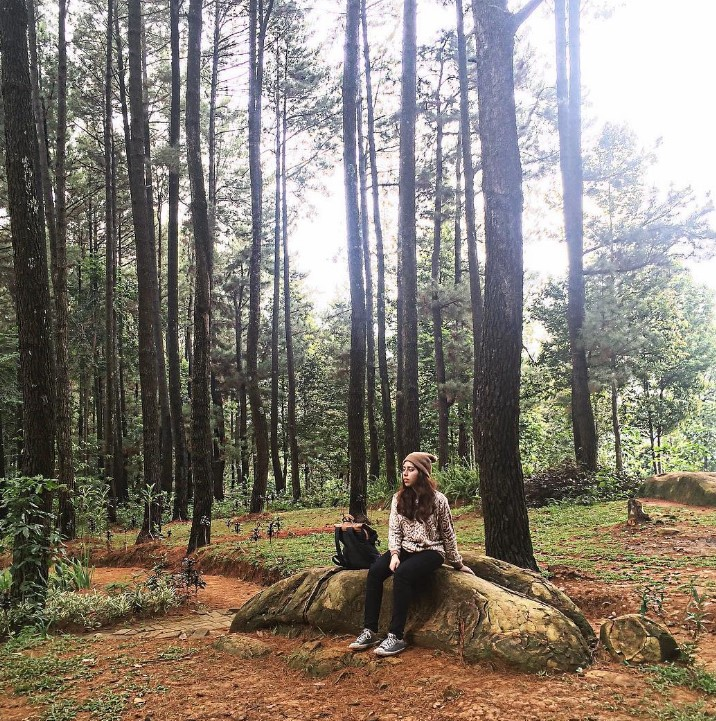 Wisata Gunung Pancar Bogor Keren Loh Informasi Tempat Terbaru Kab