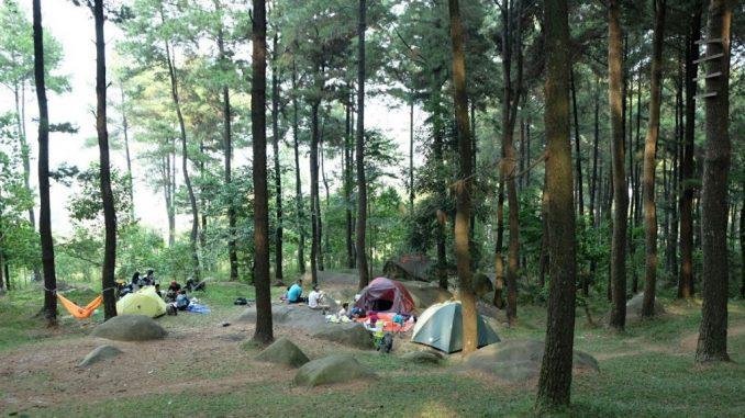 Wisata Hutan Pinus Gunung Pancar Bogor Rekreasi Id Kab