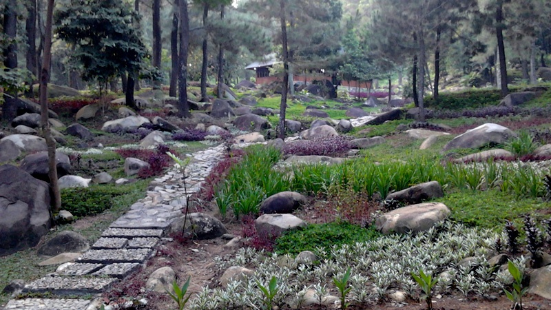 Wisata Taman Gunung Pancar Kab Bogor Jawa Barat