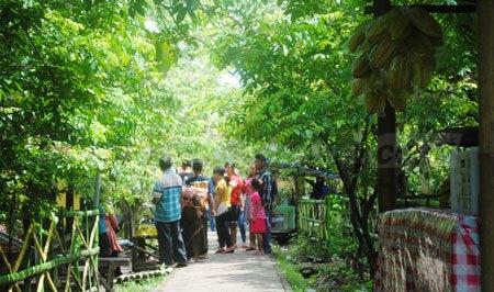 13 Agrowisata Kebun Belimbing Desa Ngringinrejo Bojonegoro Harian Kab