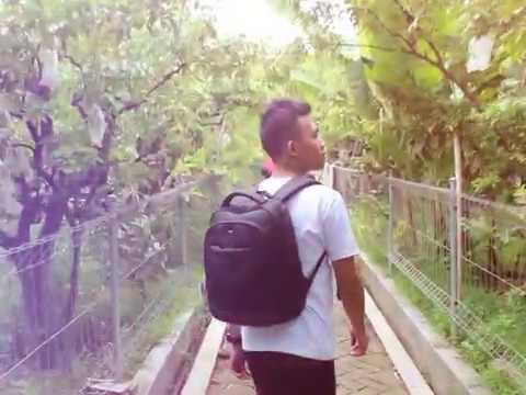 Agrowisata Kebun Belimbing Bojonegoro Youtube Ngringinrejo Kab