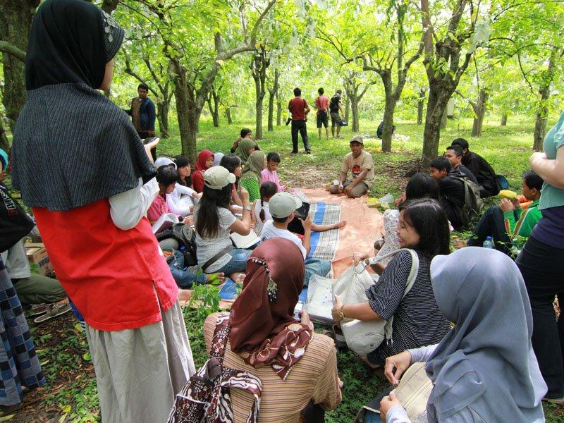 Agrowisata Kebun Belimbing Ngringinrejo Bojonegoro Kab