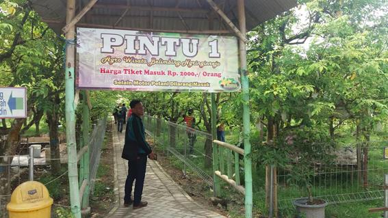 Kerja Keras Bojonegoro Melawan Stigma Kemiskinan Beritajatim Pintu Masuk Agrowisata