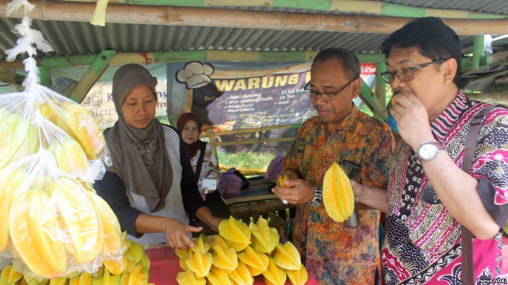 Manisnya Belimbing Ngringinrejo Angkat Perekonomian Bojonegoro Siti Marfuah Melayani Pembeli