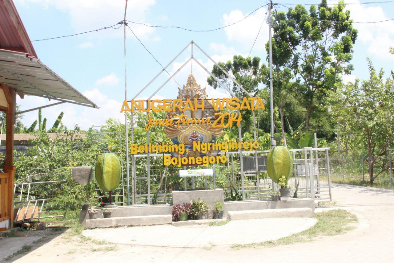 Pemerintah Kabupaten Bojonegoro Agrowisata Blimbing Ngringinrejo Lengkapi Destinasi Pilihan Wisata