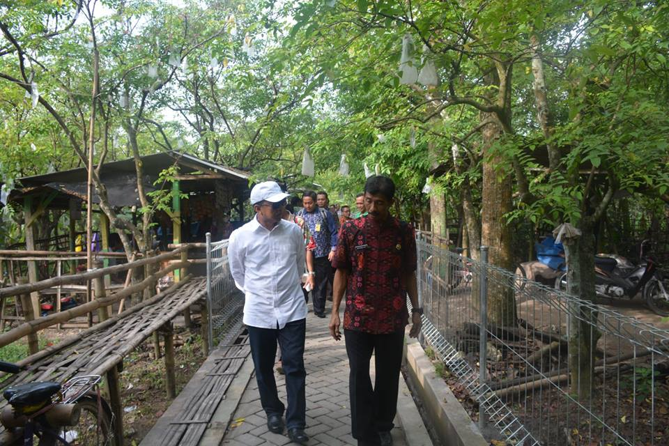 Pemerintah Kota Palangka Raya Kunjungan Agro Wisata Kebun 13781842 198536063883109