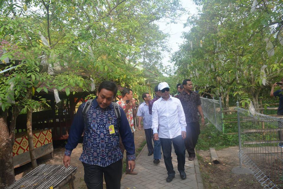 Pemerintah Kota Palangka Raya Kunjungan Agro Wisata Kebun Belimbing Kab
