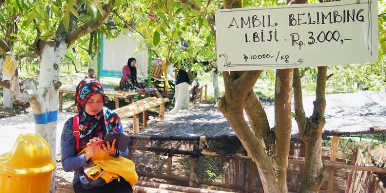 Segarnya Belimbing Ngringinrejo Halaman 1 Kompas Pengunjung Menikmati Suasana Agrowisata