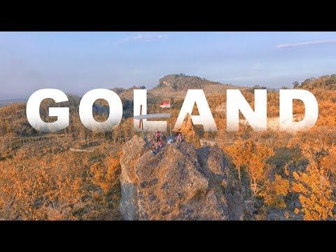 Penangkaran Rusa Jadi Wisata Edukasi Bojonegoro Worldnews Goland Goa Landak