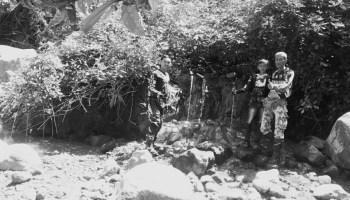 Perhutani Bojonegoro Post 4 Pohon 100 Juta Diingatkan Jaga Konservasi