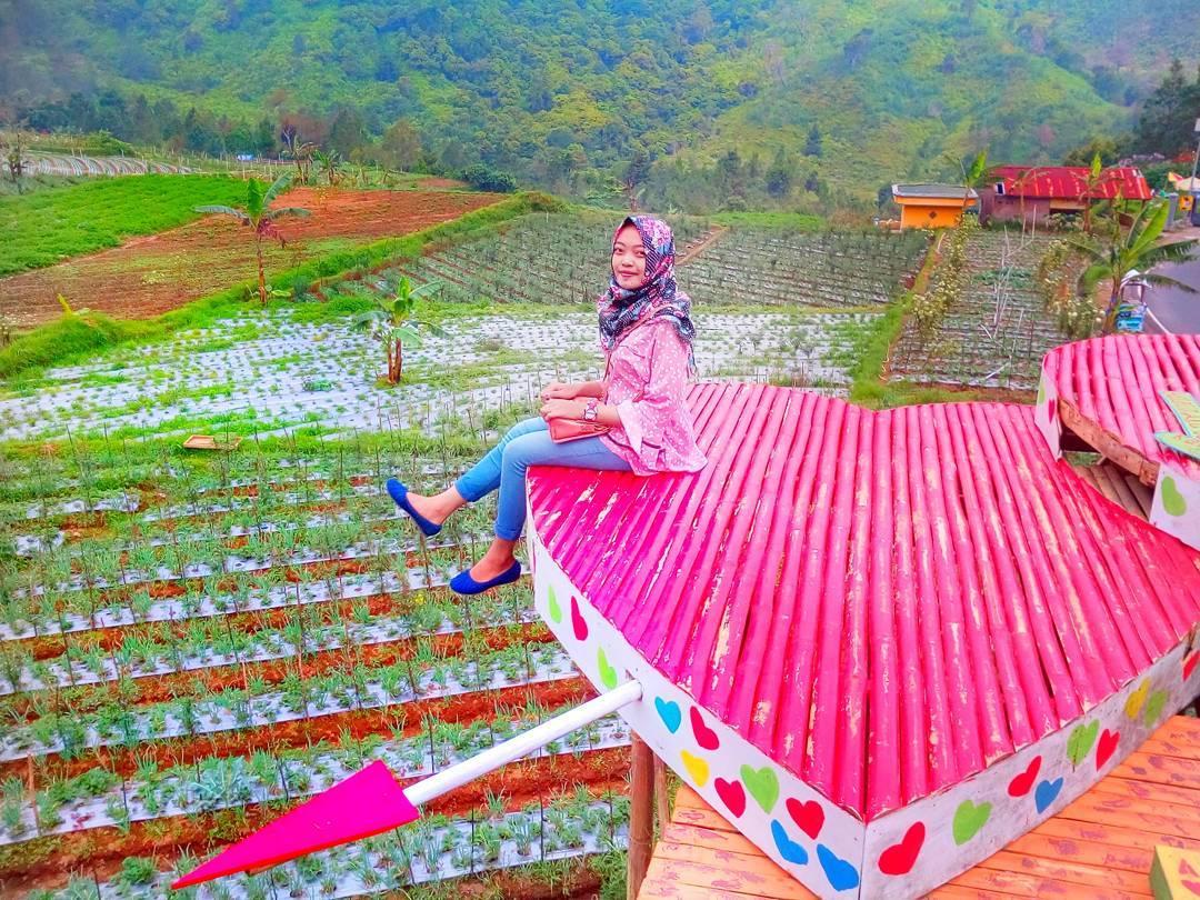 11 Tempat Wisata Bojonegoro Kunjungi Travel Lokasi Harga Tiket Jembatan