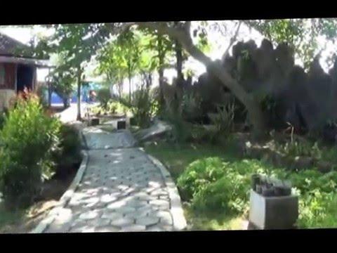 Wisata Sariyo Padangan Bojonegoro Youtube Taman Kab