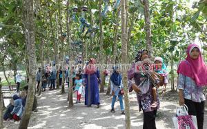 Hari Libur Waduk Bendo Diserbu Pengunjung Wisata Grobogan Kab Bojonegoro