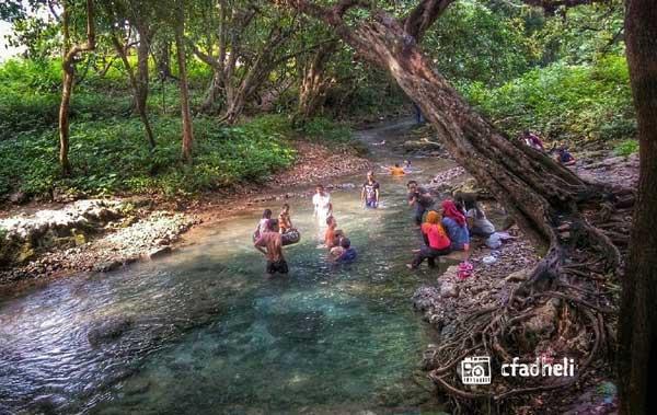 Top 10 Tempat Wisata Bojonegoro Refresh Pikiranmu Sendang Grogolan Wana