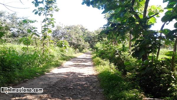 Alamat Situs Wisata Batu Solor Cermee Stonehenge Bondowoso Rijal Jarak