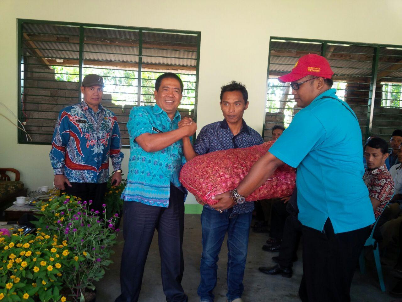 Desa Bondowoso Diproyeksikan Jadi Sentra Bawang Organik Kepala Dinas Pertanian
