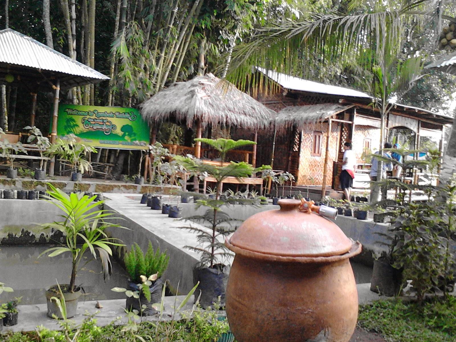 Desa Unik Selera Organik Termoter Bondowoso View Langsung Sawah Mantap