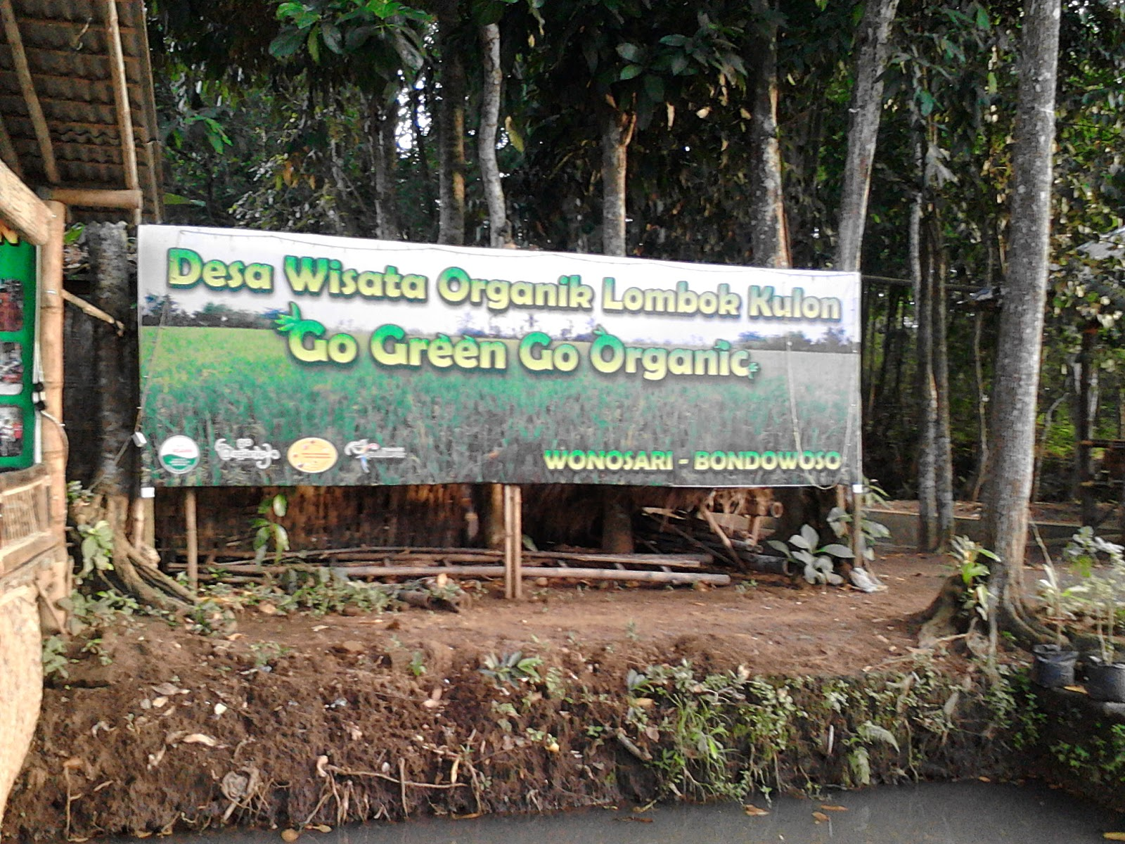 Desa Unik Selera Organik Termoter Bondowoso Wisata Kab