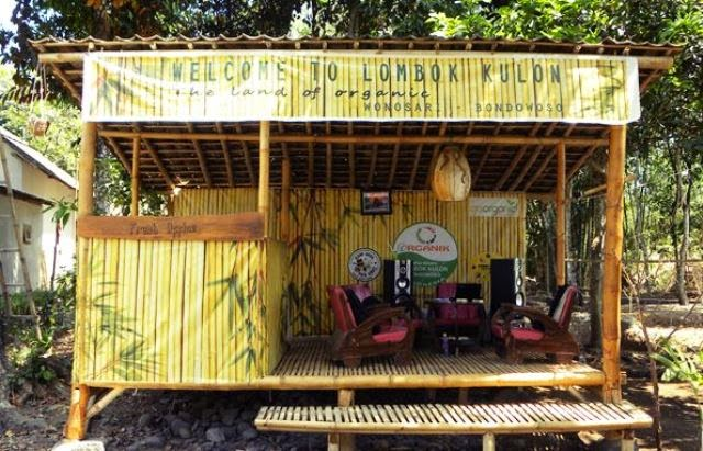 Desa Wisata Organik Lombok Kulon Phiworld Kab Bondowoso