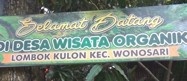 Desa Wisata Organik Sbc Tv Jatim Kab Bondowoso