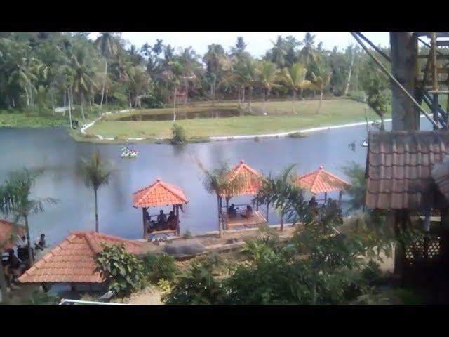 Desa Wisata Rawa Indah Almour Pujer Bondowoso Travelerbase Organik Kab