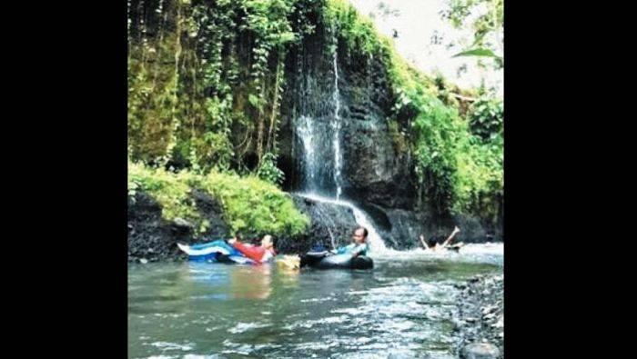 Kampung Organik Destinasi Wisata Alternatif Bondowoso Bangsa Desa Kab
