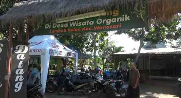 Liburan Seru Desa Wisata Organik Bondowoso Pojok Pitu Kab