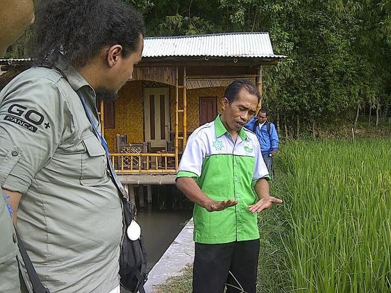 Menikmati Desa Wisata Organik Bondowoso Kab