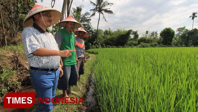 Pemkab Bondowoso Anggarkan Rp 1 7 Miliar Botanik Times Indonesia