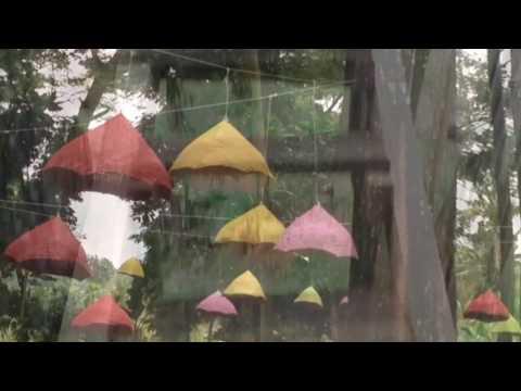 2 Pine Forest Tasnan Bondowoso Youtube Hutan Kab