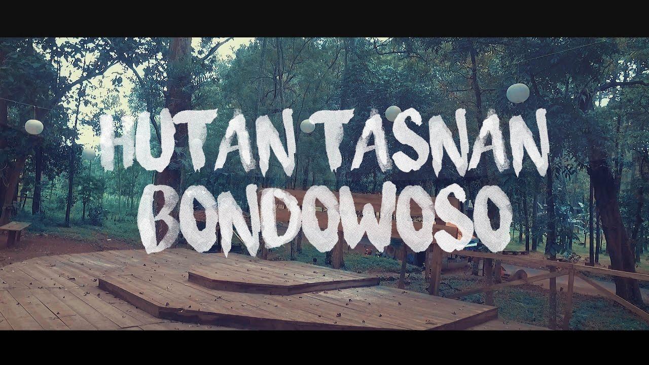Hutan Tasnan Kekinian Instagramable Bondowoso Kab