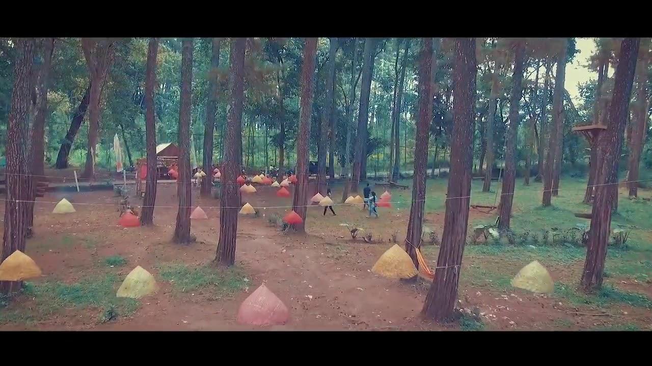 Hutan Tasnan Kekinian Instagramable Bondowoso Youtube Kab