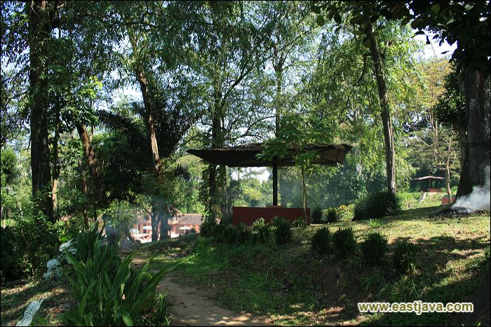 Life Adventure Pemandian Tasnan Hutan Kab Bondowoso